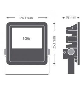 REFLECTOR 100W 5000K 100-277 VAC